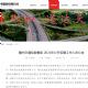 赣州交通控股集团2021年公开招聘工作人员公告